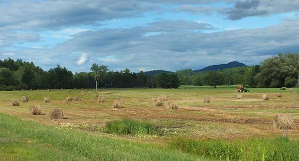 Landscape Poster featuring the photograph Hay Fields In The Adirondacks by Patricia Fitz-Gerald