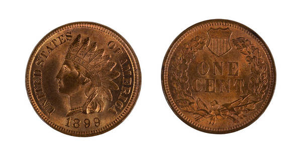 Coin Poster featuring the photograph Highly Graded American Indian Head Cents On White Background by Thomas Baker