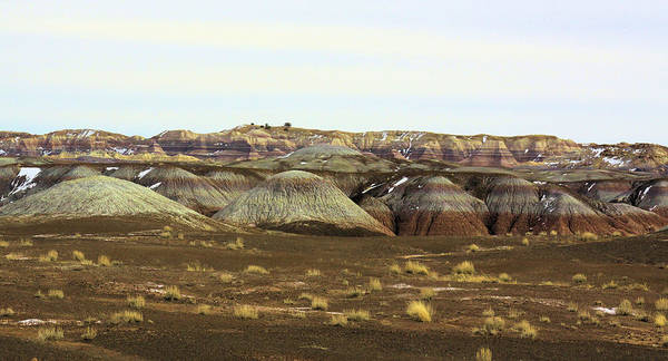 Photography Poster featuring the photograph Painted Desert Winter 0576 by Sharon Broucek