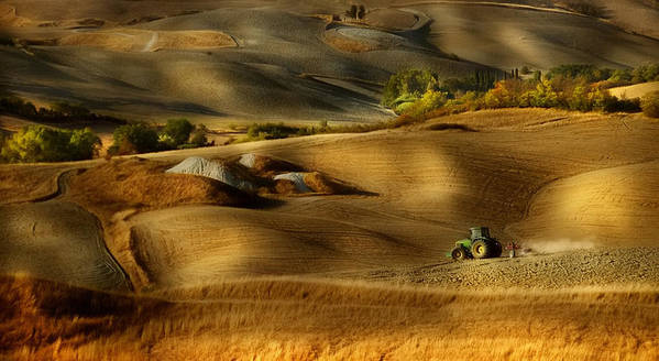 Tuscany Poster featuring the photograph Preparation For Sowing - Volterra (pi) - Toscana - Italy by Antonio Grambone
