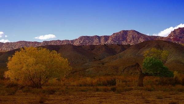 Southern Utah Poster featuring the photograph A Utah Landscape In Autumn by Jeff Swan