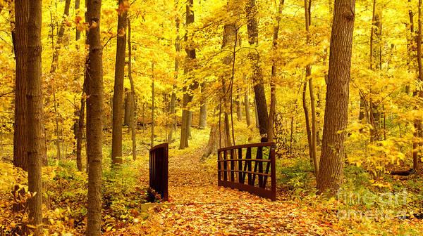 Autumnal Poster featuring the photograph Autumn Bridge II by Valerie Fuqua