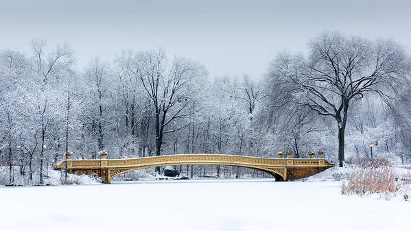 American Poster featuring the photograph Bow Bridge In Central Park Nyc by Mihai Andritoiu