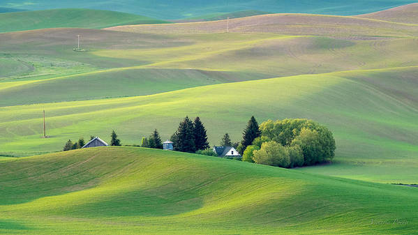 2014 Poster featuring the photograph Farm Buildings Nestled In The Palouse Country by Victoria Porter