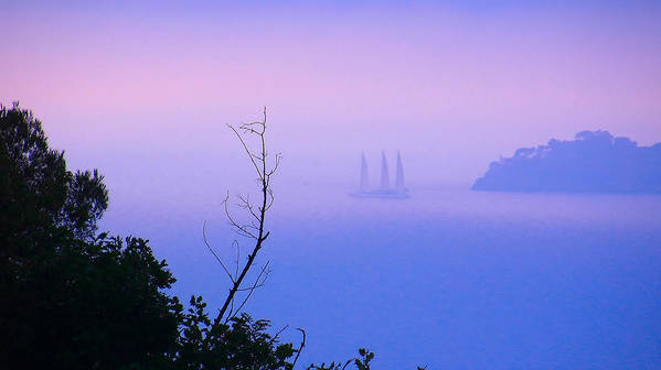 Mediterranean Sea Poster featuring the photograph Foggy Evening In Portofino by Alex HERMAN