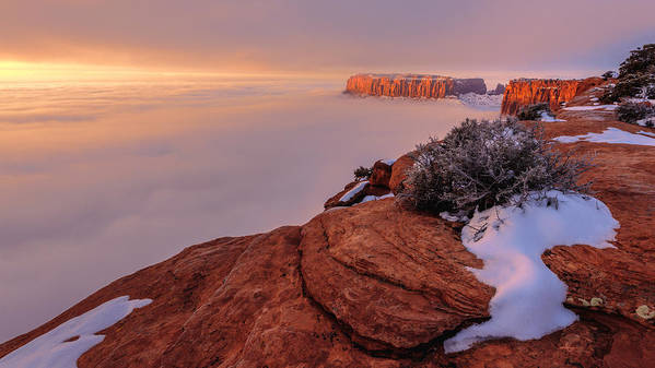Canyonlands Poster featuring the photograph Frozen Mesa by Chad Dutson
