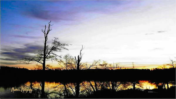 Sunset Poster featuring the photograph It's Twilight Time by Sadie Reneau