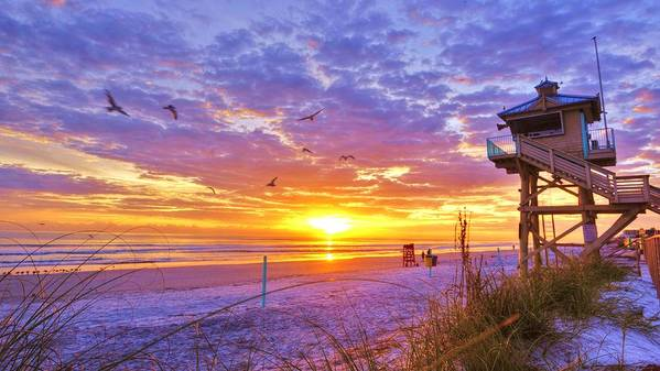 Beach Photographs Poster featuring the photograph Nsb Lifeguard Station Sunrise by DM Photography- Dan Mongosa
