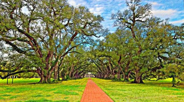 Oak Alley Plantation Poster featuring the photograph Oak Alley 3 Oil by Steve Harrington