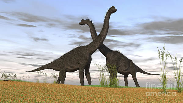 Animal Poster featuring the photograph Two Large Brachiosaurus In Prehistoric by Kostyantyn Ivanyshen