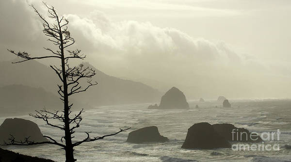 Pacific Ocean Poster featuring the photograph Cannon Beach 2 by Bob Christopher