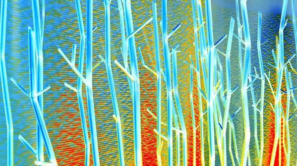 Las Vegas Poster featuring the digital art My Vegas Mandalay 8 by Randall Weidner