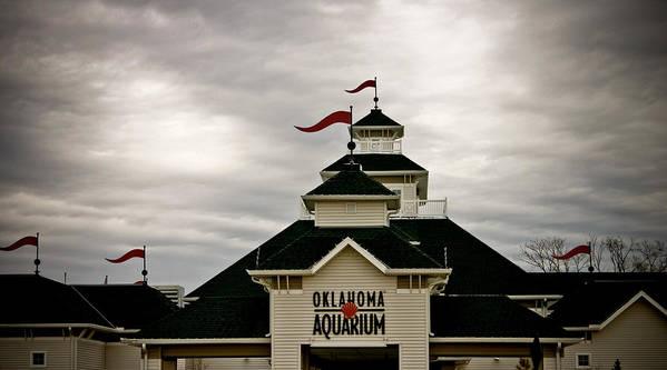 Oklahoma Aquarium Poster featuring the photograph Oklahoma Aquarium by Toni Hopper