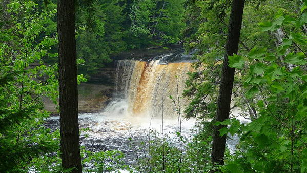 Falls Poster featuring the photograph Tahquamenon Falls Of Michigan by Michael Carrothers