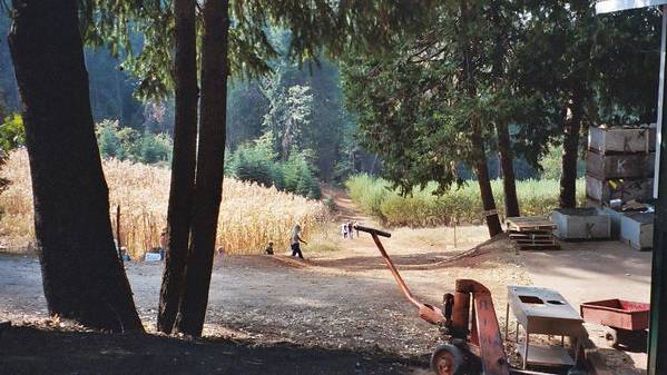 Landscape Poster featuring the photograph Harvest Time At Apple Hill by Dawn Marie Black
