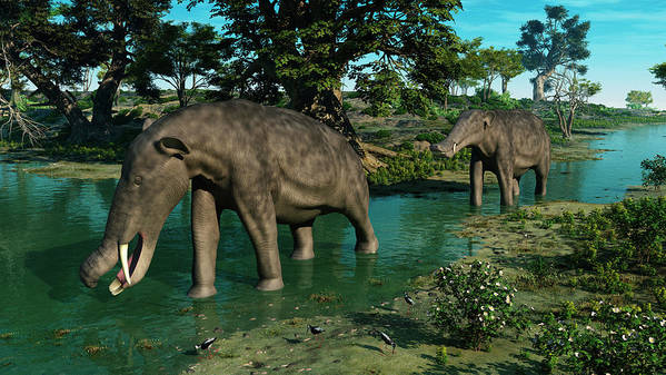 Earth Poster featuring the digital art A Pair Of Platybelodon Grazing by Walter Myers