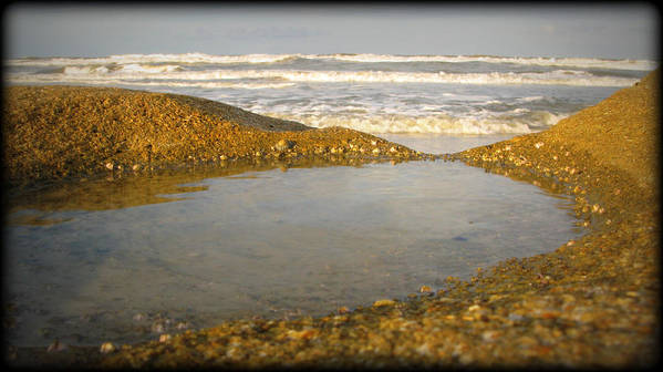 Vignette Poster featuring the photograph Beach Puddle by Mandy Shupp