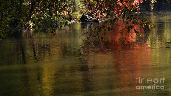 River Poster featuring the photograph Calm Reflection by Linda Shafer