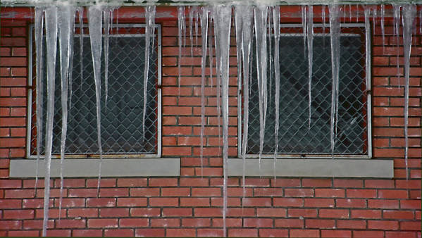 Ice Poster featuring the photograph Icicles 2 - In Front Of Windows Off Red Brick Bldg. by Steve Ohlsen