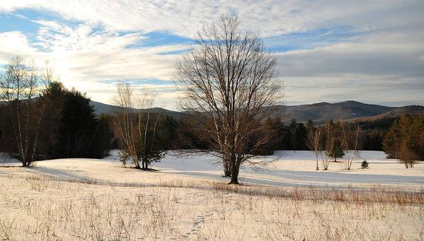 Back Roads Of New Hampshire January 28 Poster featuring the photograph Looking West Late Afternoon by Bill Driscoll