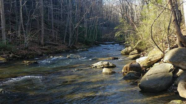 Stream Poster featuring the photograph Mountain Creek by Jeff Harrell Jr