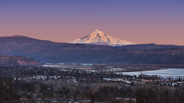 Volcano Poster featuring the photograph Mt. Hood From Camas by John Christopher