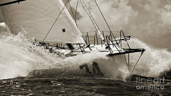 Sailboat Poster featuring the photograph Sailboat Le Pingouin Open 60 Sepia by Dustin K Ryan