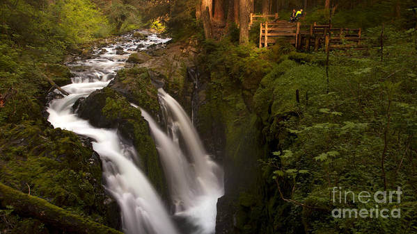 Olympic National Park Poster featuring the photograph Sol Duc Falls by Heniek
