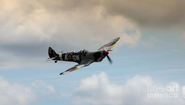 Spitfire Poster featuring the photograph Spitfire by Angel Tarantella