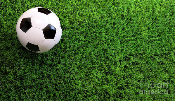 Ball Poster featuring the photograph Soccer Ball On Green Grass by Sandra Cunningham