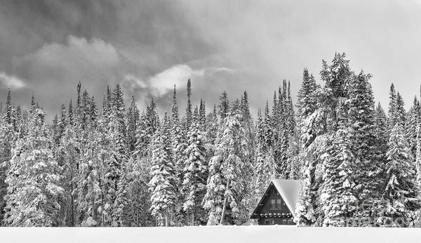 Black & White Poster featuring the photograph Taking Refuge - Grand Teton by Sandra Bronstein