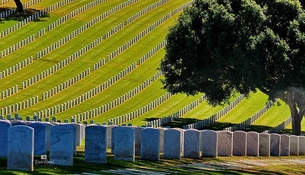 Rosecrans National Cemetery Poster featuring the photograph Freedom's Sacrafice by Russ Harris