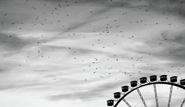 Horizontal Poster featuring the photograph Many Birds Flying Over Giant Wheel In Berlin by Image by Ivo Berg (Crazy-Ivory)