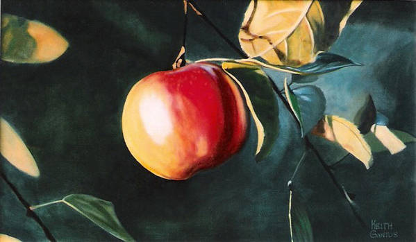 Apple Poster featuring the painting Before The Fall by Keith Gantos