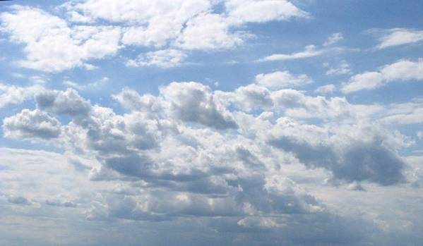 Clouds Poster featuring the photograph Cloudy by Rhonda Barrett