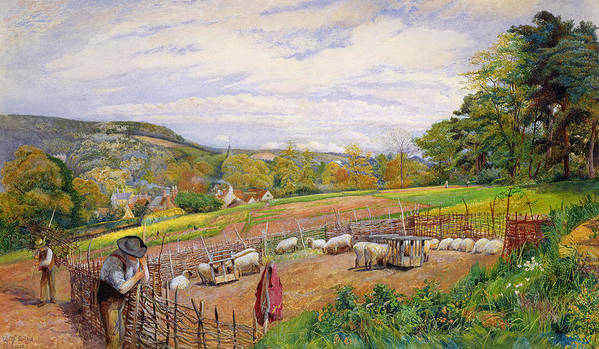 Mending Poster featuring the painting Mending The Sheep Pen by William Henry Millais