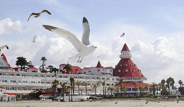 Beach Poster featuring the photograph Morning Gulls On Coronado by Margie Wildblood