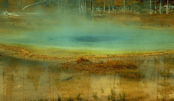 Landscape Poster featuring the photograph Reflection by Alex Nakhshon