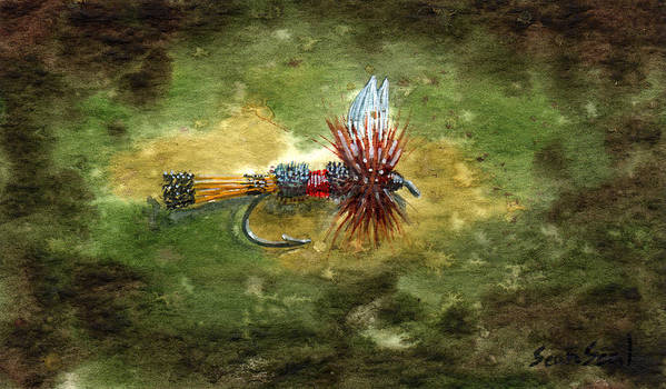 Fly Fishing Flies Royal Coachman Fish Lure Poster featuring the painting Royal Coachman by Sean Seal