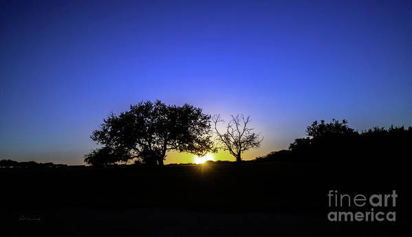 Moonlit Poster featuring the photograph Last Light Texas Hill Country Paradise Canyon Sunset 8053a by Ricardos Creations