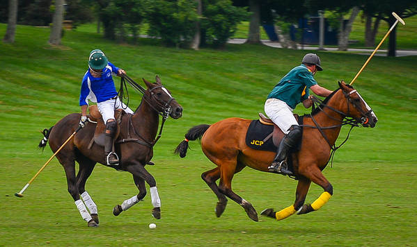 Polo Match Horse Horses Thoroughbred Sticks Jersey Jerseys Helmets Ball Poster featuring the photograph Polo Match by Richard Marquardt