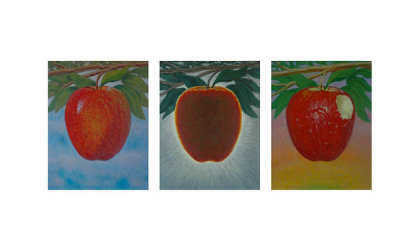 Set Poster featuring the painting Apples Triptych by Don Young
