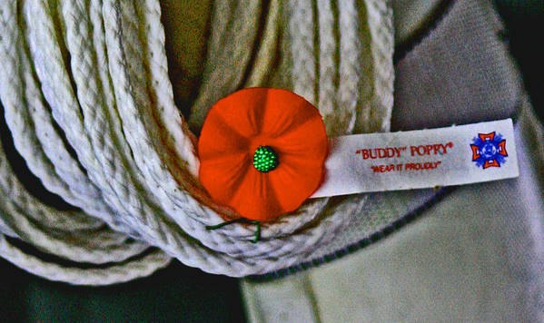 Buddy Poppy Poster featuring the digital art Buddy Poppy by Joseph Coulombe