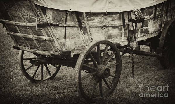 Conestoga Poster featuring the photograph Conestoga Wagon by Paul W Faust - Impressions of Light
