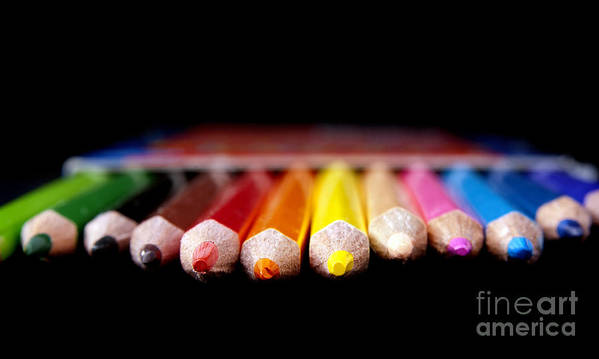 Pencil Poster featuring the photograph Pencils by Tim Hester