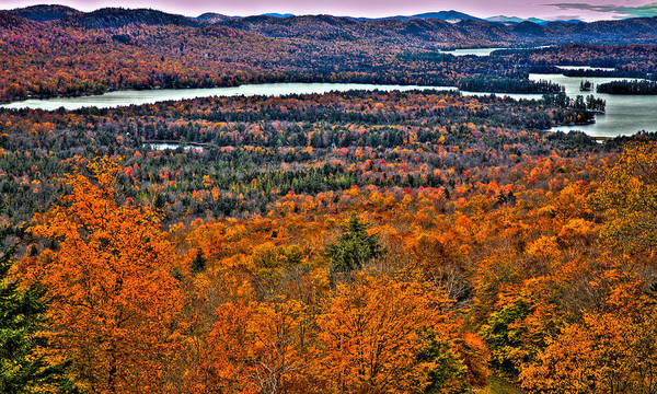 Adirondack's Poster featuring the photograph View From Mccauley Mountain by David Patterson