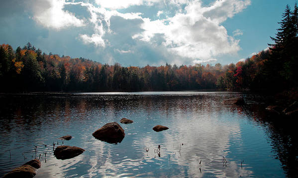 Adirondack's Poster featuring the photograph Cary Lake by David Patterson