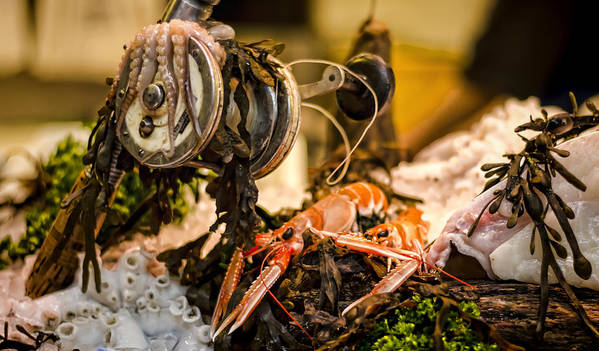 Norway Lobster Poster featuring the photograph Catch Of The Day by Heather Applegate