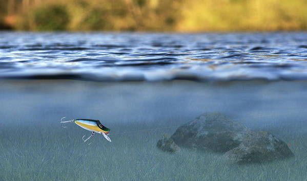 Lure In Use Poster featuring the photograph Fishing Lure In Use by Meirion Matthias