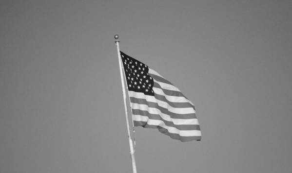 America Poster featuring the photograph American Spirit B/w by Talia Misner